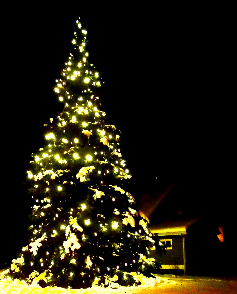 Love Note: Oh Christmas Tree! – Gretchen Loves Anchorage