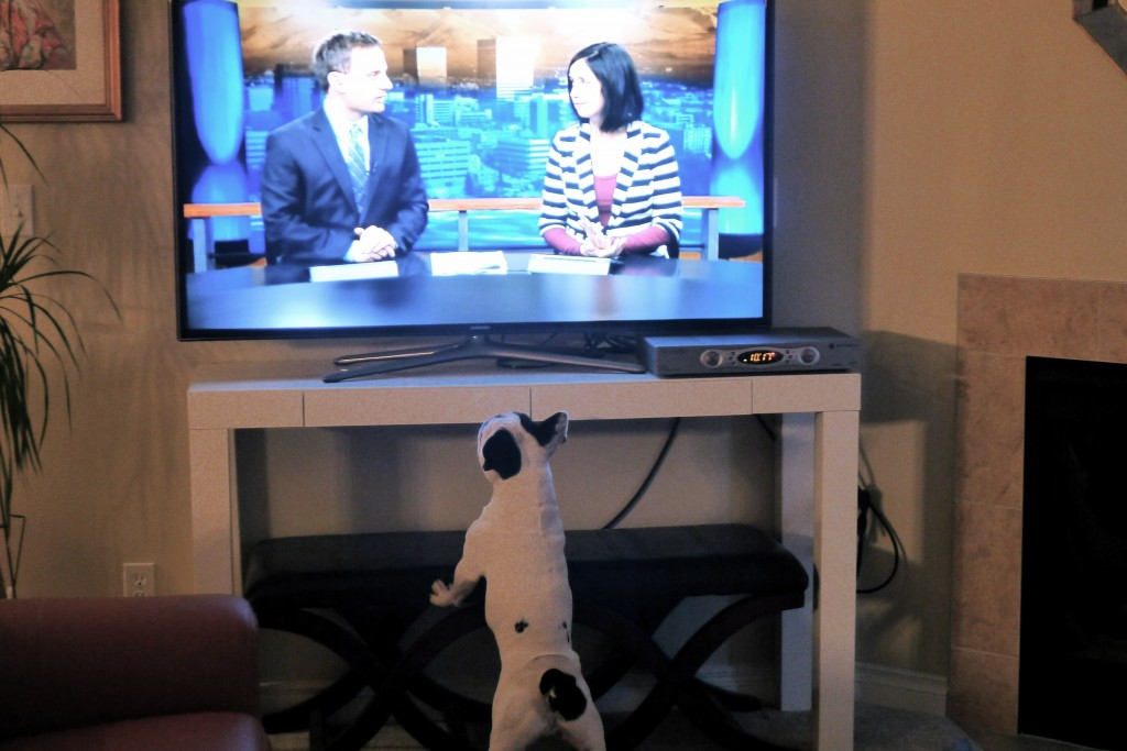 Grover loves Ch. 2 too!